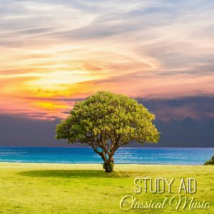 relaxing study music download mp3