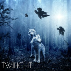 twilight instrumental music