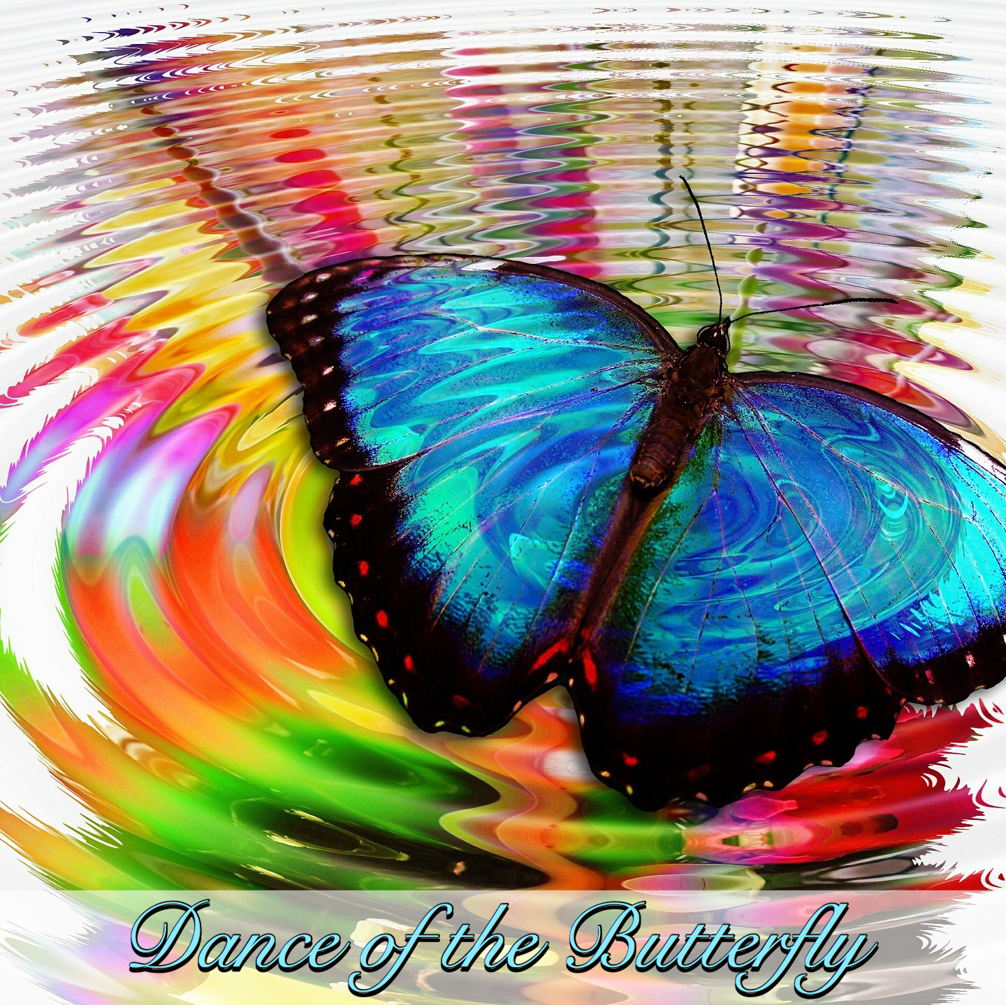 Dance of the Butterfly- Spa Mp3 Music Download | Music2relax com