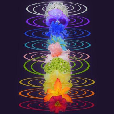 Binaural Beats & Meditation Music Therapy no2 Mp3 Download | Music2relax com