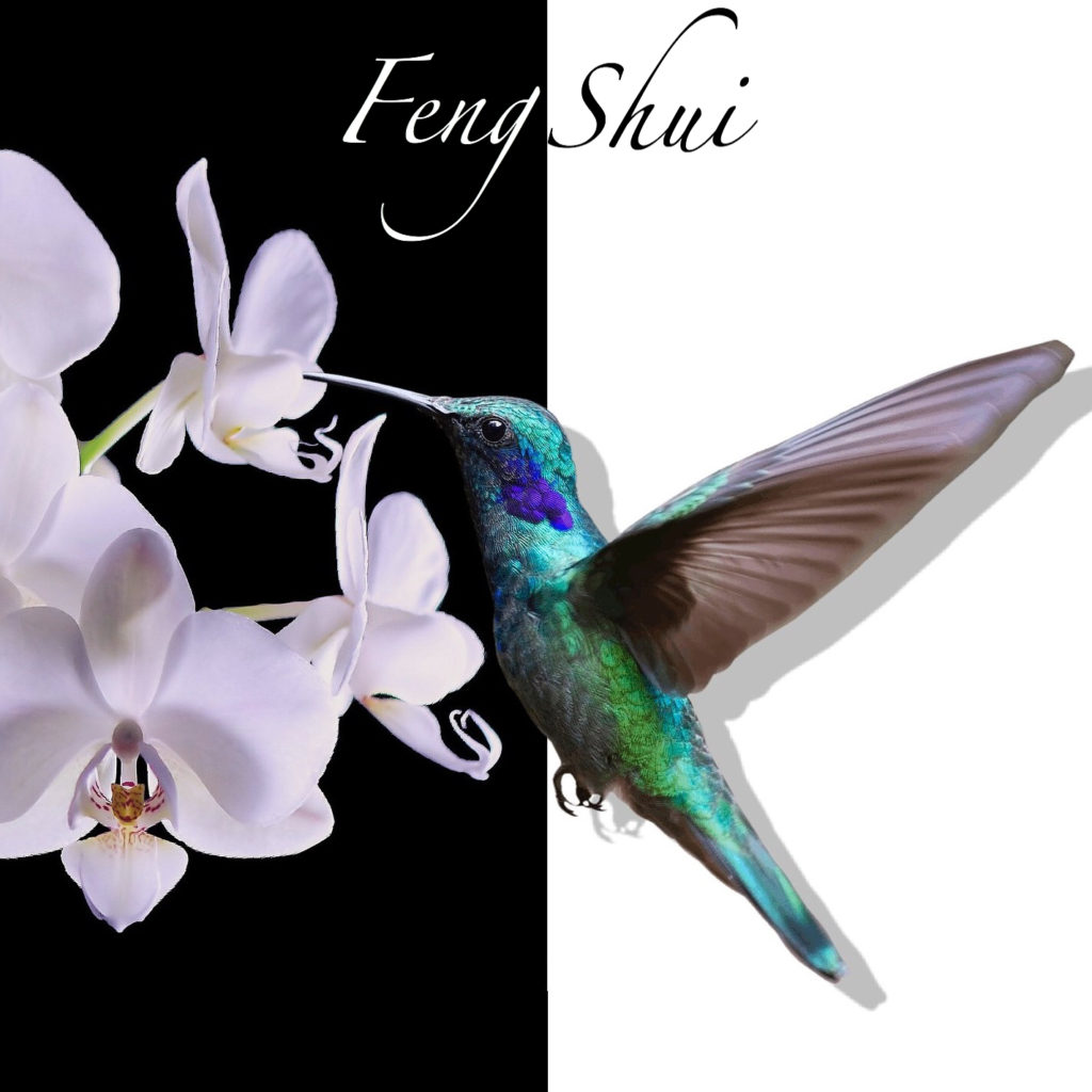 Feng Shui Spa Relaxing Mp3 Music Download   Music2relax com